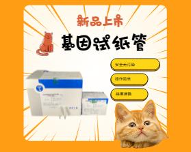 宠物基因试纸管 - 新品上市