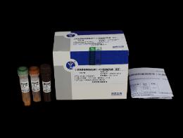 小反刍兽疫病毒荧光RT-PCRballbet体育钱包ballbet贝博注册