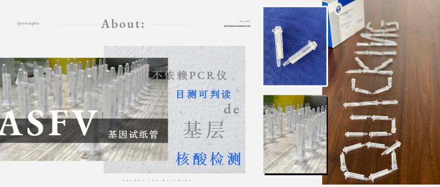 展会回顾丨丨南京猪业大会(图1)